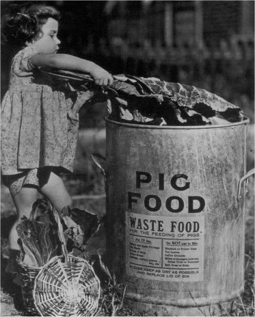 Home Sweet Home Front - 'Girl + Kitchen Waste for Pigs' Image