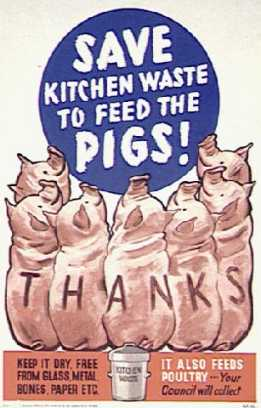 An Image of a Poster Reading 'Save Kitchen Waste to Feed the Pigs'